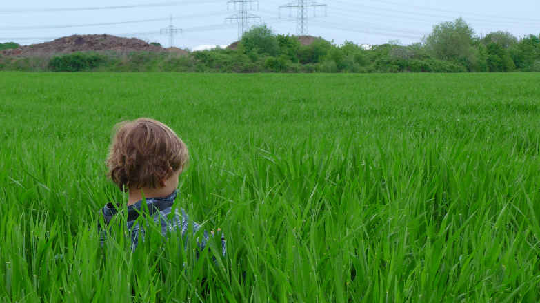 Tick Control: Boy sitting in tall grass by 4028mdk09 CC-by-SA-3.0